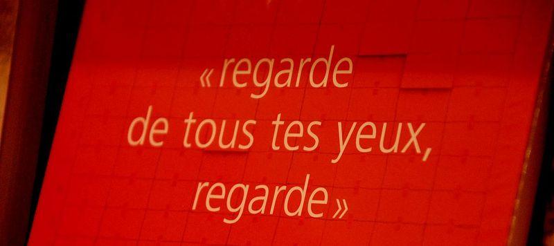 Salon_du_livre_09__393_