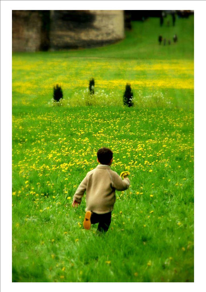 Enfant_a_la_fleur