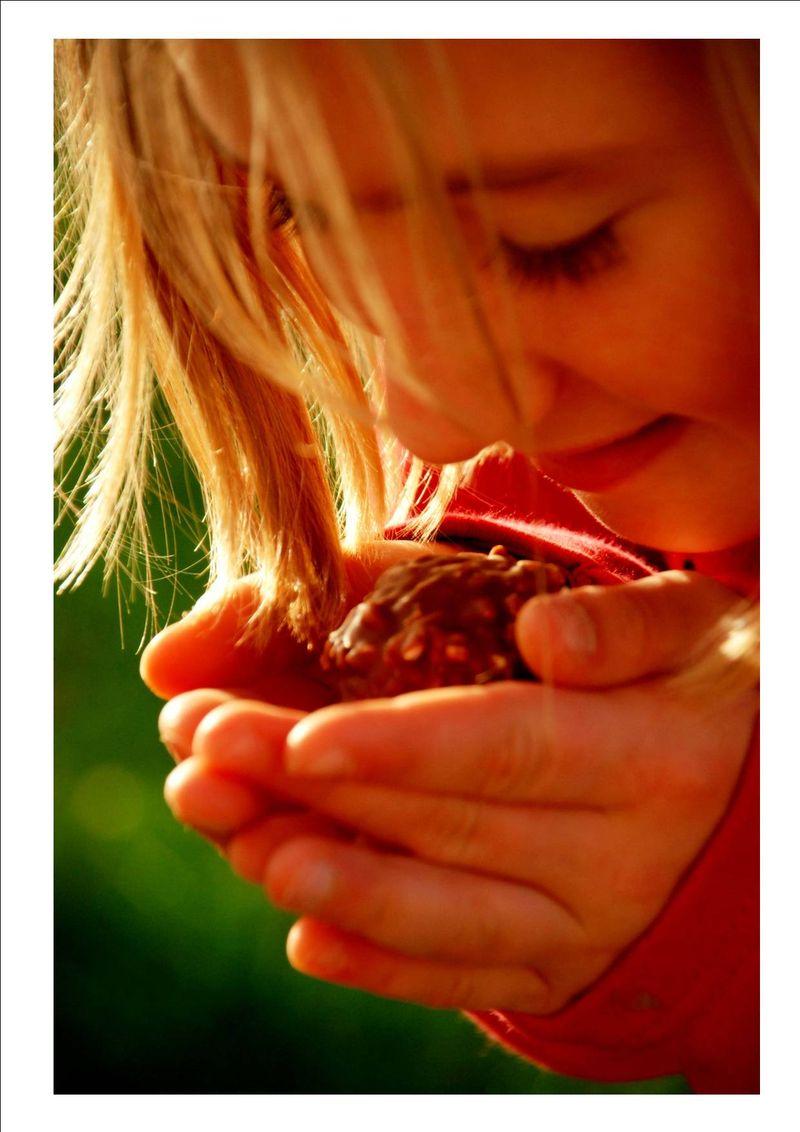 Divin chocolat 2