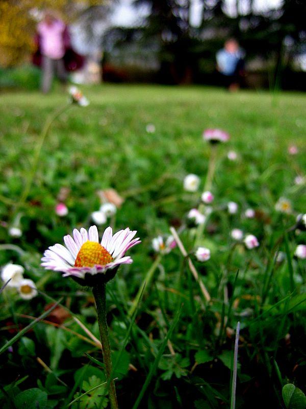 Photo_796