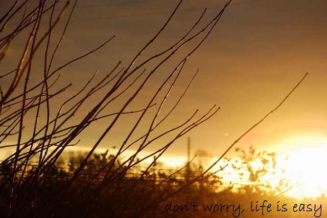 Dont_worry_life_is_easy