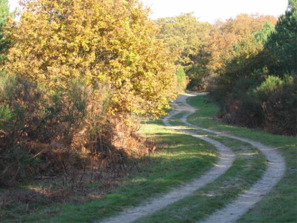 Longue_route