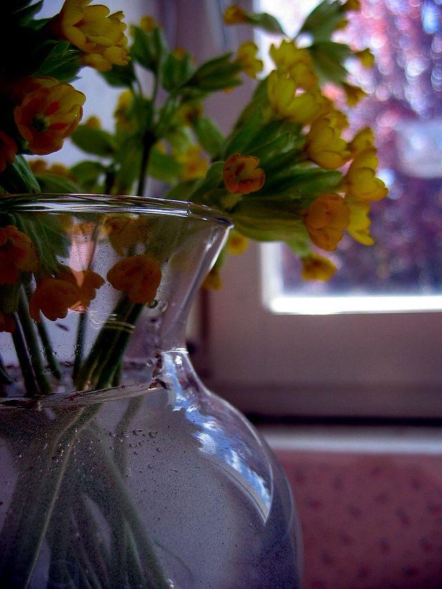 Photo_493_2